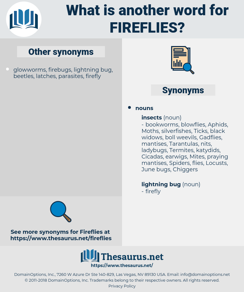 Fireflies, synonym Fireflies, another word for Fireflies, words like Fireflies, thesaurus Fireflies