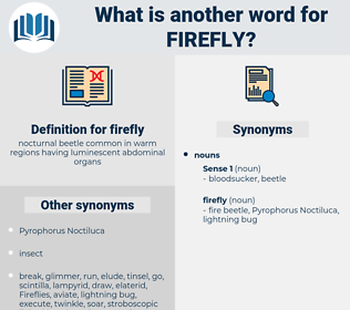 firefly, synonym firefly, another word for firefly, words like firefly, thesaurus firefly