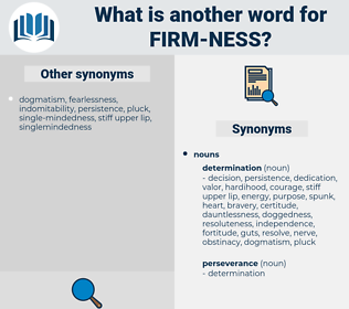 firm ness, synonym firm ness, another word for firm ness, words like firm ness, thesaurus firm ness