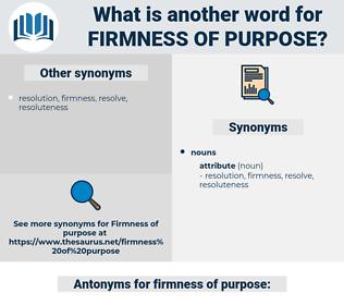 firmness of purpose, synonym firmness of purpose, another word for firmness of purpose, words like firmness of purpose, thesaurus firmness of purpose