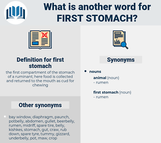 first stomach, synonym first stomach, another word for first stomach, words like first stomach, thesaurus first stomach
