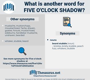 five o'clock shadow, synonym five o'clock shadow, another word for five o'clock shadow, words like five o'clock shadow, thesaurus five o'clock shadow