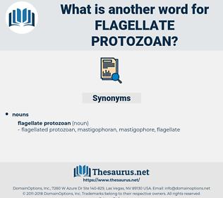 flagellate protozoan, synonym flagellate protozoan, another word for flagellate protozoan, words like flagellate protozoan, thesaurus flagellate protozoan