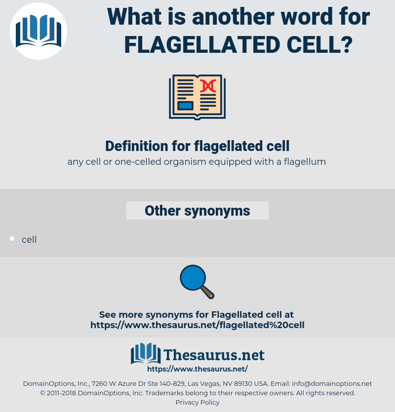 flagellated cell, synonym flagellated cell, another word for flagellated cell, words like flagellated cell, thesaurus flagellated cell