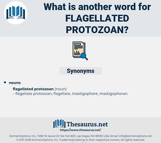 flagellated protozoan, synonym flagellated protozoan, another word for flagellated protozoan, words like flagellated protozoan, thesaurus flagellated protozoan