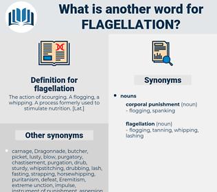 flagellation, synonym flagellation, another word for flagellation, words like flagellation, thesaurus flagellation