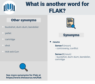 flak, synonym flak, another word for flak, words like flak, thesaurus flak