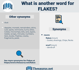 flakes, synonym flakes, another word for flakes, words like flakes, thesaurus flakes