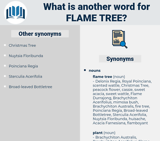 flame tree, synonym flame tree, another word for flame tree, words like flame tree, thesaurus flame tree