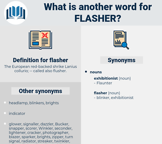 flasher, synonym flasher, another word for flasher, words like flasher, thesaurus flasher