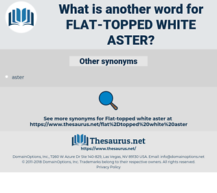 flat-topped white aster, synonym flat-topped white aster, another word for flat-topped white aster, words like flat-topped white aster, thesaurus flat-topped white aster