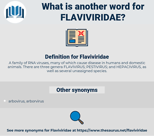 Flaviviridae, synonym Flaviviridae, another word for Flaviviridae, words like Flaviviridae, thesaurus Flaviviridae