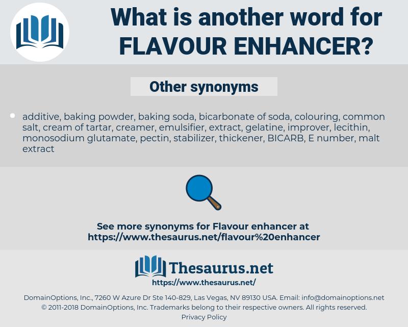 flavour enhancer, synonym flavour enhancer, another word for flavour enhancer, words like flavour enhancer, thesaurus flavour enhancer