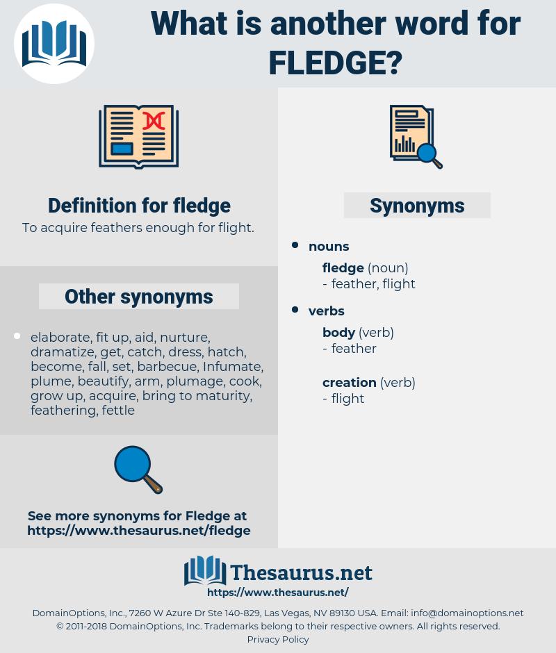 fledge, synonym fledge, another word for fledge, words like fledge, thesaurus fledge