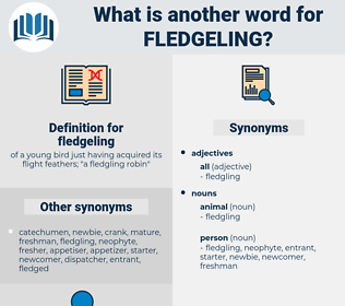 fledgeling, synonym fledgeling, another word for fledgeling, words like fledgeling, thesaurus fledgeling
