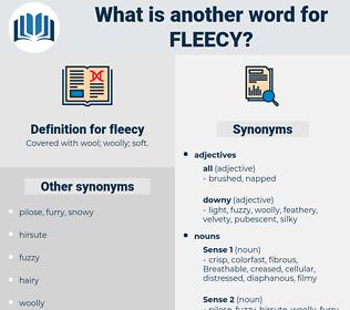 fleecy, synonym fleecy, another word for fleecy, words like fleecy, thesaurus fleecy