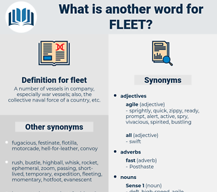 fleet, synonym fleet, another word for fleet, words like fleet, thesaurus fleet