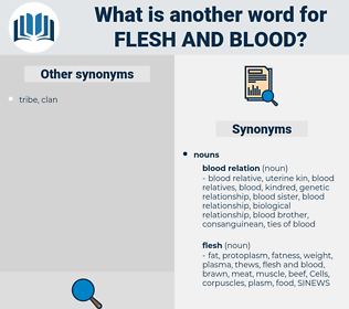 flesh and blood, synonym flesh and blood, another word for flesh and blood, words like flesh and blood, thesaurus flesh and blood