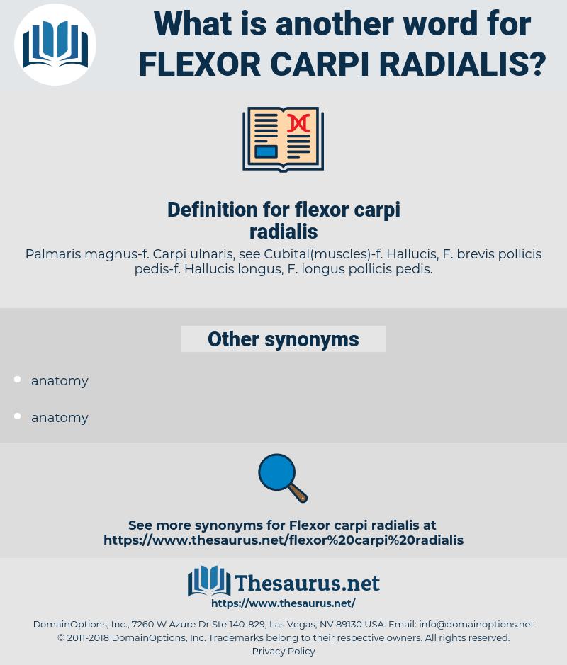 flexor carpi radialis, synonym flexor carpi radialis, another word for flexor carpi radialis, words like flexor carpi radialis, thesaurus flexor carpi radialis