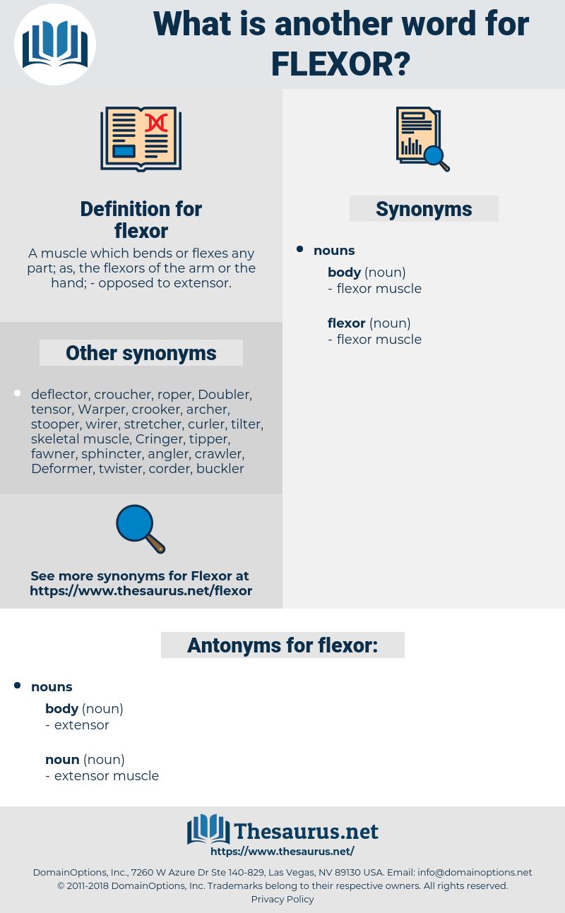 flexor, synonym flexor, another word for flexor, words like flexor, thesaurus flexor