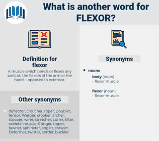 flexor, synonym flexor, another word for flexor, words like flexor, thesaurus flexor