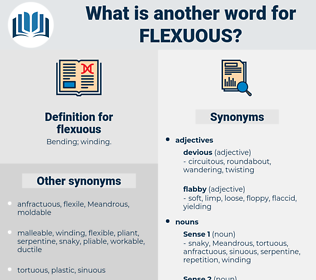 flexuous, synonym flexuous, another word for flexuous, words like flexuous, thesaurus flexuous