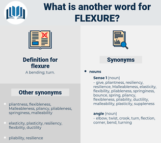 flexure, synonym flexure, another word for flexure, words like flexure, thesaurus flexure