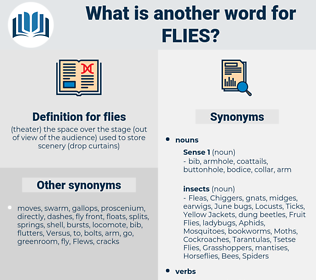 flies, synonym flies, another word for flies, words like flies, thesaurus flies
