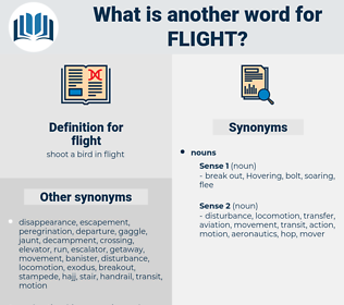 flight, synonym flight, another word for flight, words like flight, thesaurus flight