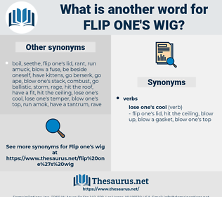 flip one's wig, synonym flip one's wig, another word for flip one's wig, words like flip one's wig, thesaurus flip one's wig