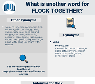 flock together, synonym flock together, another word for flock together, words like flock together, thesaurus flock together