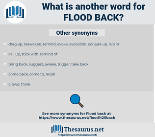 flood back, synonym flood back, another word for flood back, words like flood back, thesaurus flood back