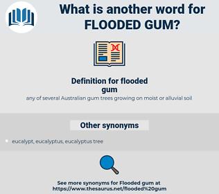 flooded gum, synonym flooded gum, another word for flooded gum, words like flooded gum, thesaurus flooded gum