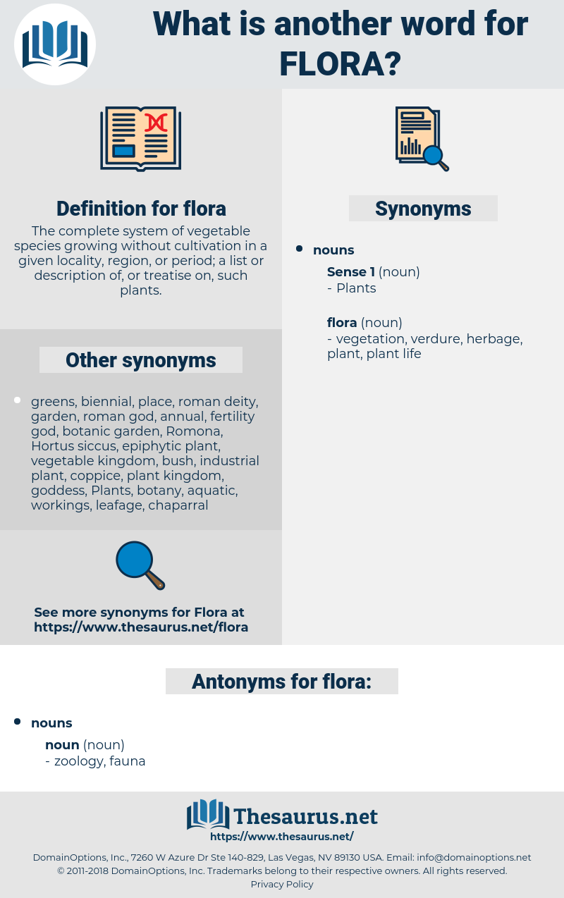 flora, synonym flora, another word for flora, words like flora, thesaurus flora