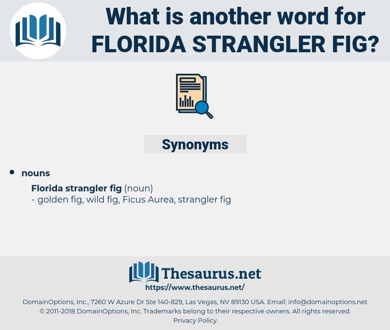 Florida Strangler Fig, synonym Florida Strangler Fig, another word for Florida Strangler Fig, words like Florida Strangler Fig, thesaurus Florida Strangler Fig