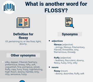 flossy, synonym flossy, another word for flossy, words like flossy, thesaurus flossy