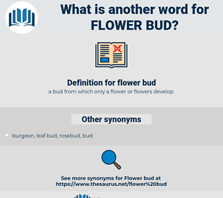 flower bud, synonym flower bud, another word for flower bud, words like flower bud, thesaurus flower bud
