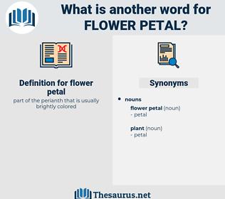 flower petal, synonym flower petal, another word for flower petal, words like flower petal, thesaurus flower petal