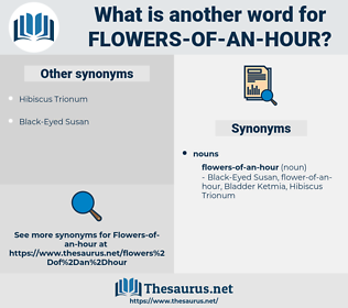 flowers-of-an-hour, synonym flowers-of-an-hour, another word for flowers-of-an-hour, words like flowers-of-an-hour, thesaurus flowers-of-an-hour