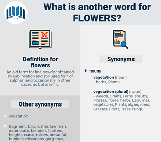 flowers, synonym flowers, another word for flowers, words like flowers, thesaurus flowers