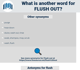 flush out, synonym flush out, another word for flush out, words like flush out, thesaurus flush out