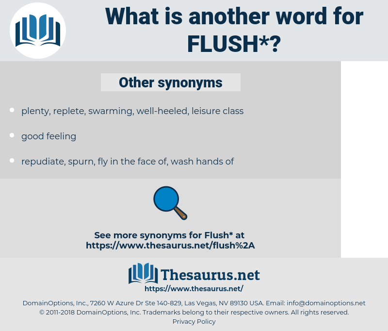 flush, synonym flush, another word for flush, words like flush, thesaurus flush
