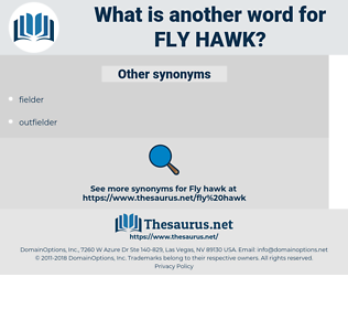 fly hawk, synonym fly hawk, another word for fly hawk, words like fly hawk, thesaurus fly hawk