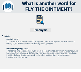 fly the ointment, synonym fly the ointment, another word for fly the ointment, words like fly the ointment, thesaurus fly the ointment