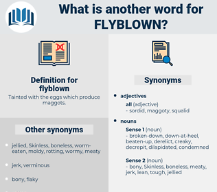 flyblown, synonym flyblown, another word for flyblown, words like flyblown, thesaurus flyblown