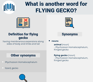 flying gecko, synonym flying gecko, another word for flying gecko, words like flying gecko, thesaurus flying gecko