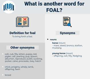 foal, synonym foal, another word for foal, words like foal, thesaurus foal