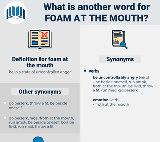 foam at the mouth, synonym foam at the mouth, another word for foam at the mouth, words like foam at the mouth, thesaurus foam at the mouth