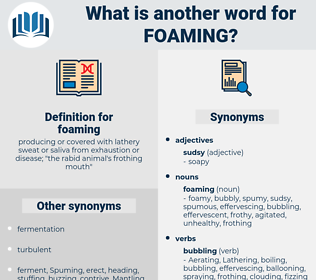 foaming, synonym foaming, another word for foaming, words like foaming, thesaurus foaming