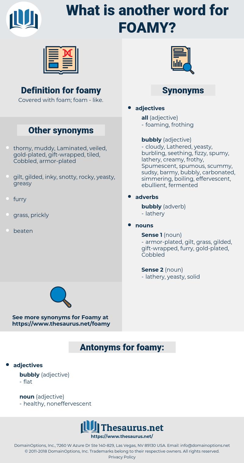 foamy, synonym foamy, another word for foamy, words like foamy, thesaurus foamy